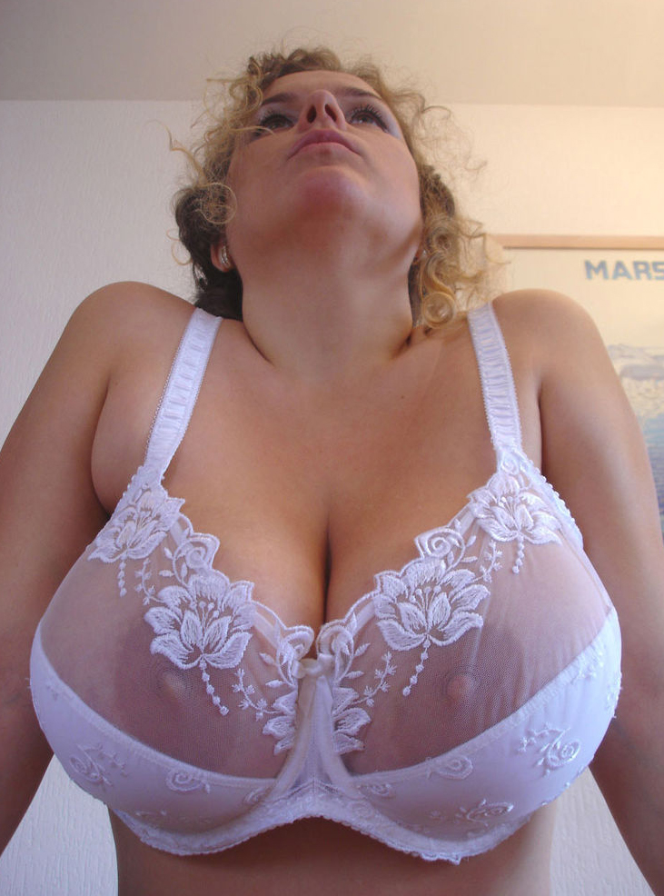 Consider, blonde big tits see through lace lingerie consider